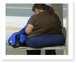 term paper on obesity